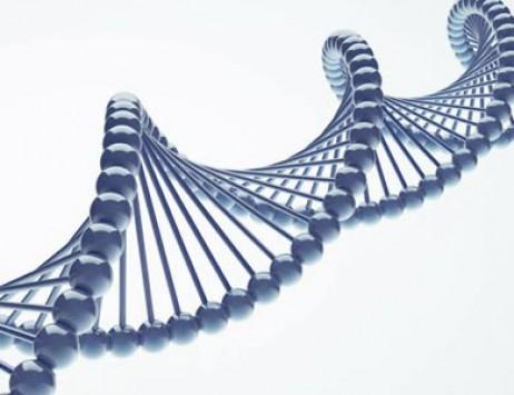 Mazda Adli, Forschung, Wissenschaft, psychiatrische Genetik,  Pharmakogentik